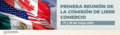 DECLARACIONES DE LOS COMITÉS EN LA PRIMERA REUNIÓN DE LIBRE COMERCIO DEL TRATADO ENTRE LOS ESTADOS UNIDOS MEXICANOS, LOS ESTADOS UNIDOS DE AMÉRICA Y CANADÁ